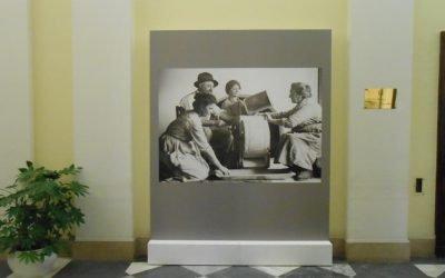 Expo 2015 photo exhibition installation